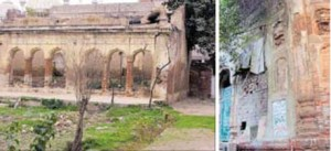 Shere Punjab News Samadan copy copy